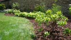 Aménagement de jardin - RENNES
