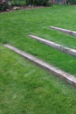 Création jardin Cesson Sévigné